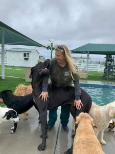 Heather and a great dane at Woodland West Pet Resort's Doggy Daycare Park.